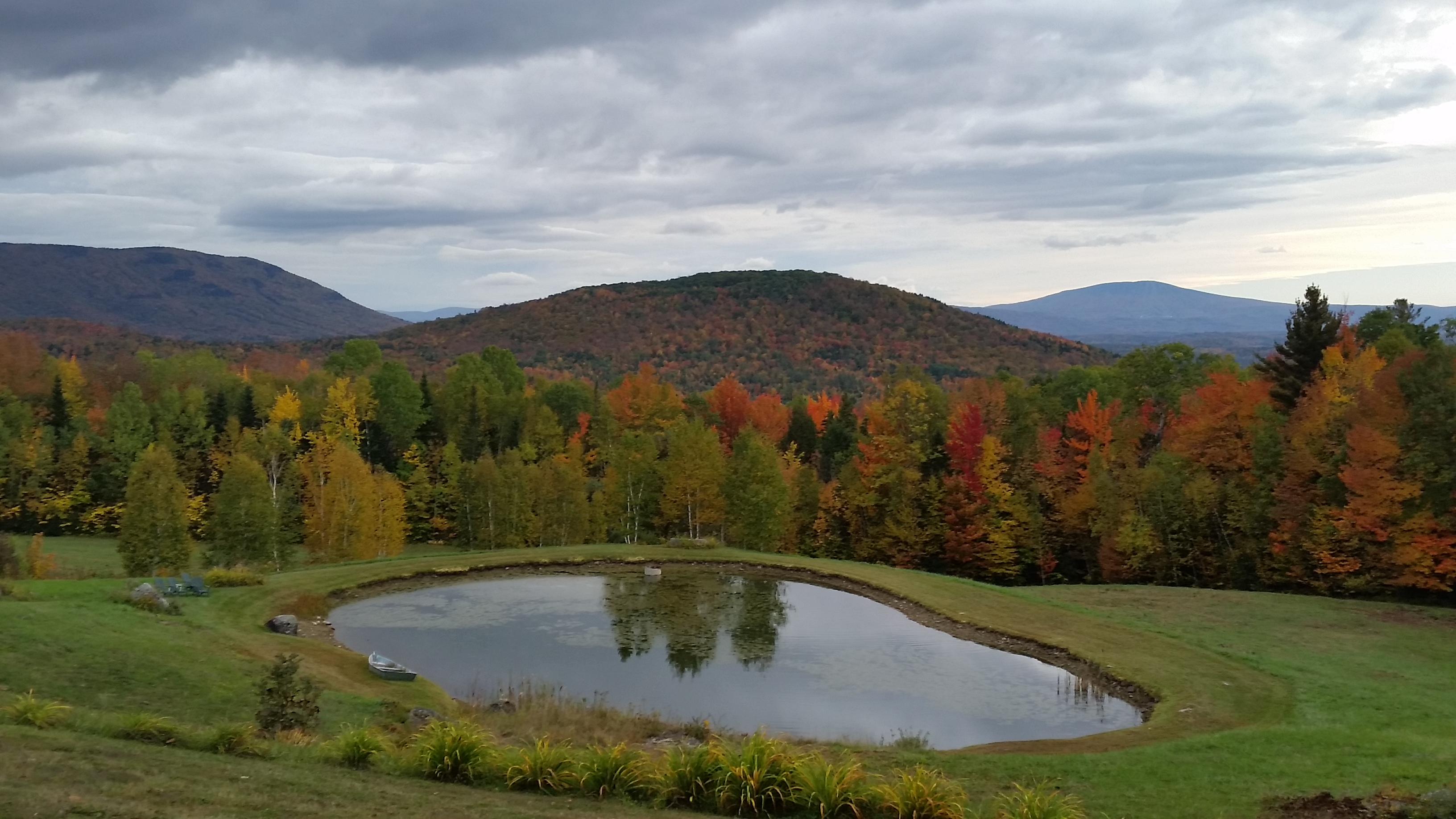 Weston Dale Rd pond
