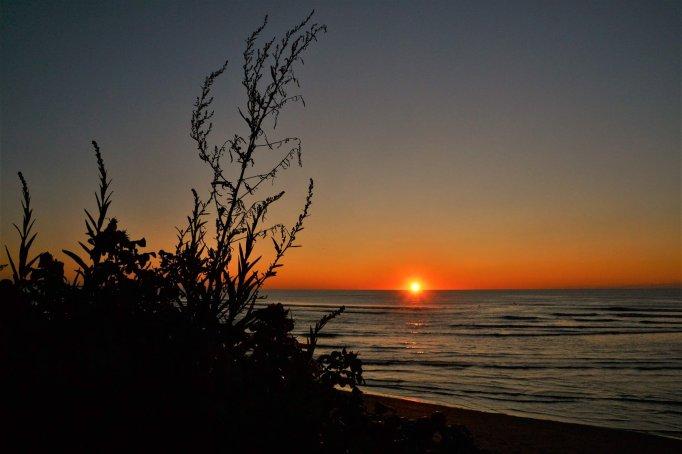 Ogunquit sunrise Barber 2019-45
